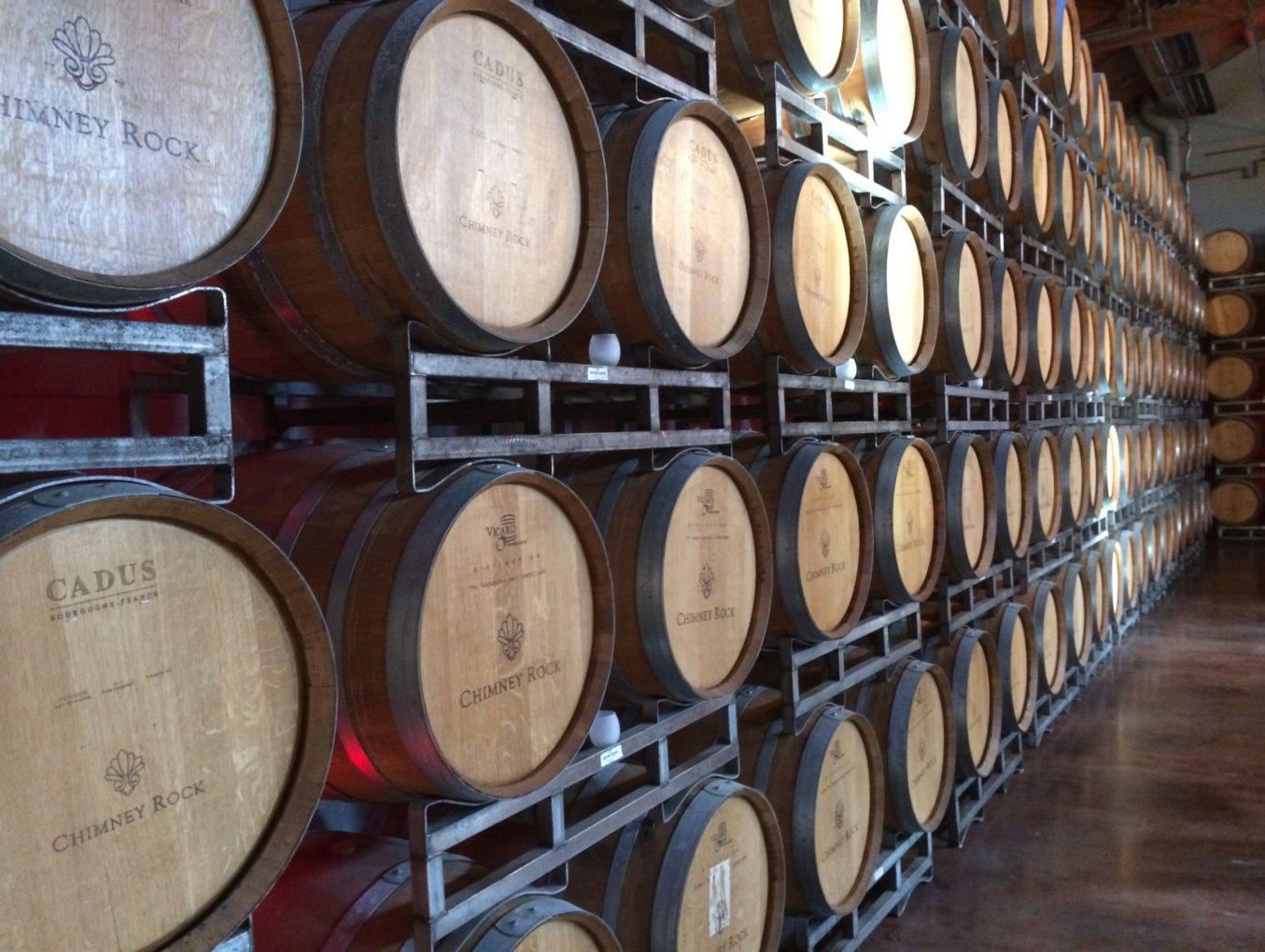 Progetti di Web Marketing del Vino